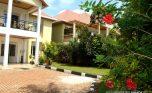 kagugu rent plut properties (2)