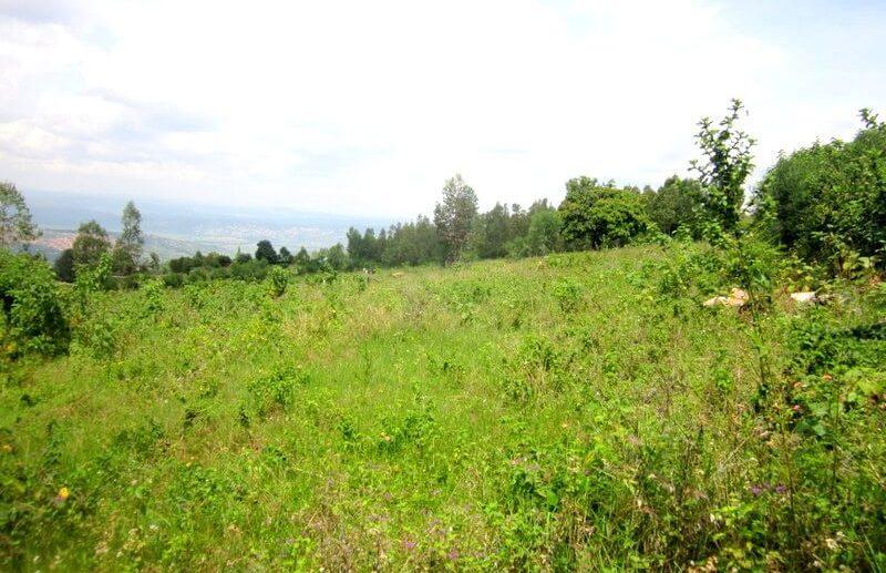 rebero land for sale (2)