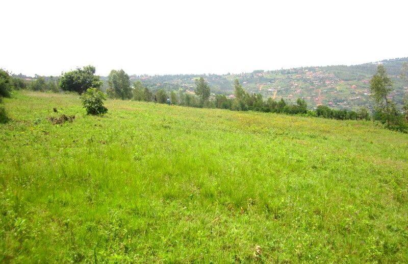 rebero land for sale (6)