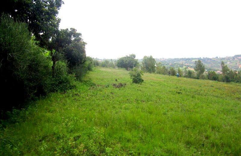 rebero land sale (1)
