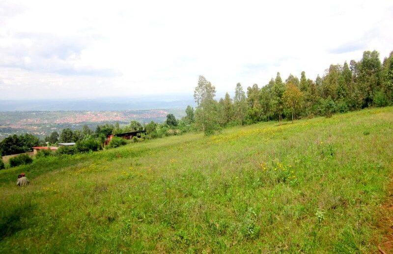 rebero land sale (3)