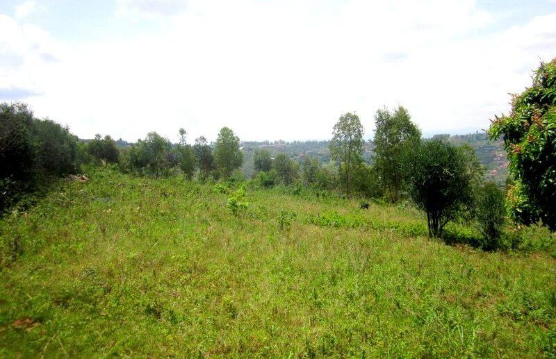 rebero land sale (6)
