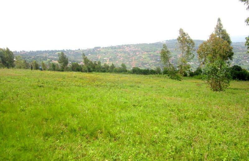 rebero land sale (7)