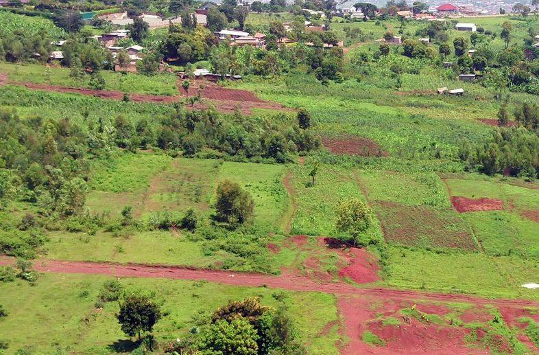 rebero plots for sale plut properties (3)