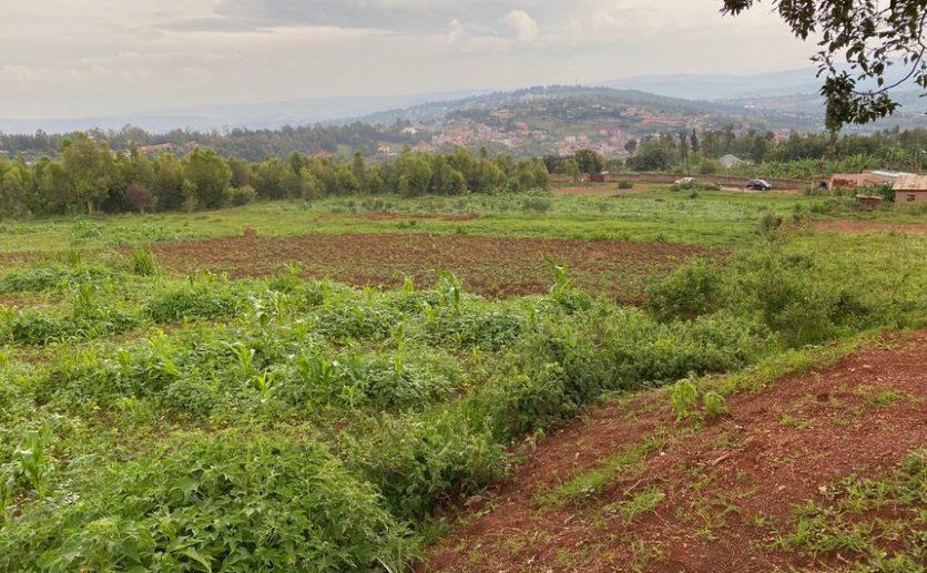 rebero plots for sale plut properties (4)